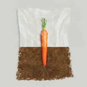 Sacchetti sottovuoto biodegradabili
